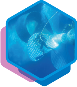 servicio-polichado-helices2